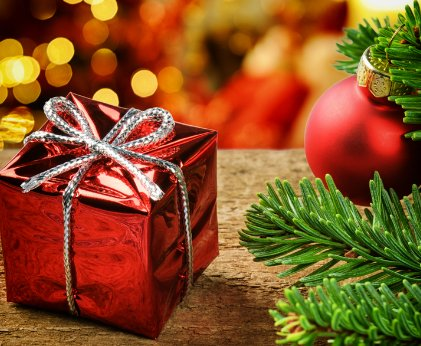 Christmas Special - Book Now & Save!